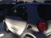 Vorstellung fortwo forfour 2014 Sandro